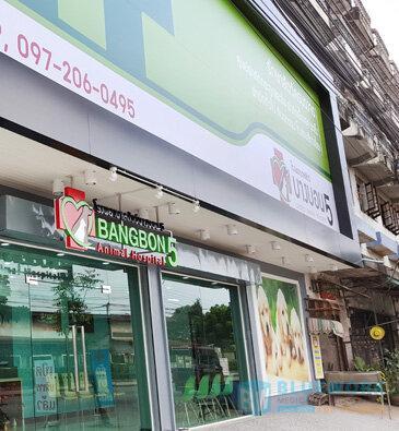 ออกแบบตกแต่งโรงพยาบาลสัตว์บางบอน5-bangbon5animalhospital2